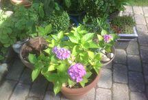 Hyggelige stunder / Hygge i haven