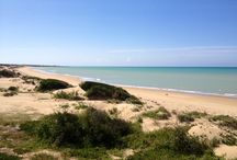 Exclusive Beach / A stunning beach, deep in the typical Mediterranean scrub vegetation of the nature reserve at Randello, and less than 5 min. from the Resort. A private beach elegantly equipped with services and a bar, which will be operational from mid June 2014.