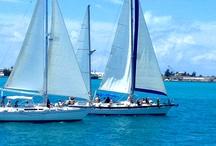 The Best of Bermuda