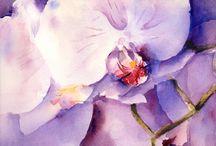 Flowers & Butterflies / Akvarell