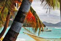 Great Caribbean Blogs / by www.WhereToStay.com
