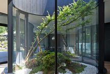 Interior-Garden