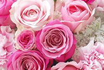 フラワーギフト Floral gift