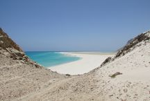Socotra International Company eco-tours / The island of Paradise!