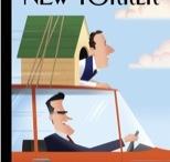 Politics / by Stephen Francoeur