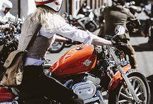 Custom  & Harleys