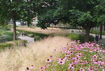 Parks, gardens