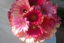 Pretty Pinks / by Lizzy's Bloomin' Flowers