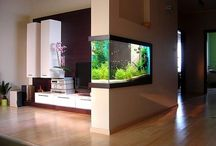 Fish tanks