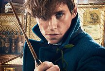 The Fantastic Beasts
