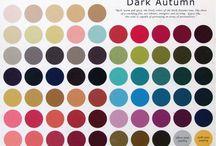 12 Seasons Dark Autumn