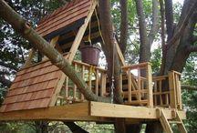 casa del árbol Marcelo