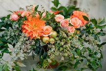 Floral / by Sarah Ehlinger