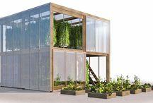 urban garden