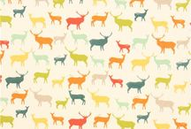 Organic Cotton Fabric