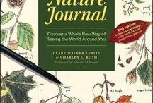 Nature Journaling / Paying attention to the nature all around you. Recording your observations in a journal.