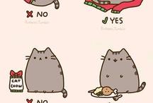 Meow ❤