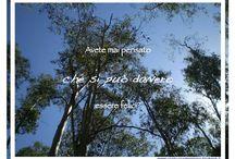 | Decidere la felicità: il blog | / www.unabuonadecisione.blogspot.com
