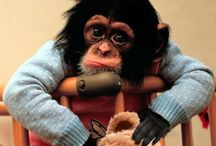 Me & my Monkeys!!!
