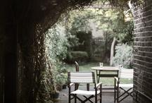 Gardens / by Caitlin McLarty