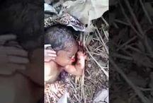 Anne Çocuğunu Poşete Koyup Ormana Attı