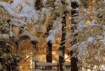 Winter's tale❄️❄️