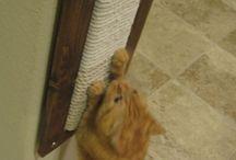 Домики и аксессуары для животных