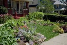 Front Yard/ Garden / by Melissa Anderson