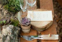Wedding {succulent}