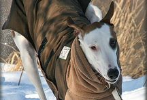 High Performance Dog Jackets / See how naturally dogs run and play in stylish dog jackets from Voyagers K9 Apparel. Dog clothes are made breed-specific for the best fit and keep dogs warm and dry in the rain, snow, and winds that blow cold. Enjoy dog coats that simply fit.