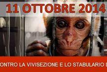CORTEO contro la vivisezione a Ferrara - 11.10.14 / Organizzazione del corteo contro la vivisezione e lo stabulario dell'Università di Ferrara che si terrà sabato 11 ottobre 2014 a Ferrara. Informazioni: http://goo.gl/Xg6TdY