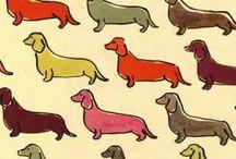 Yumi Loves Animal Prints