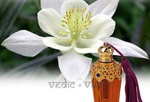 Attar and Perfume | Online Store for Attar and Perfume, VEDICVAANI.COM / Purchase,Send Gifts online, Attar Perfume Collections, Vedicvaani.com Vedic Beautiful Touch,Rose Attar,Sandalwood Attar,Goldmohar Attar,Frangipani Attar, Attar, Ittar or Itra is a natural perfume extracted from flowers, spices, barks of some fragrance based trees and herbs into base oil such as Sandalwood oil.