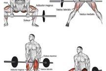Best legs workouts