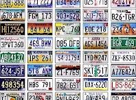 License Plates / by Nolan Sholar