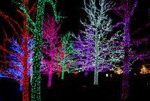 Christmas Lights / Holiday lighting and outdoor displays