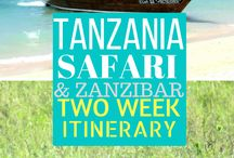 Travel Africa / Travel Africa, Africa travel itinerary, Travel Tanzania, Travel Zanzibar, Africa national park, What to do Africa, Africa travel tips