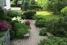 Garden part 6