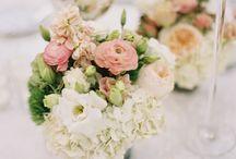 Matrimonio - Al centro della tavola