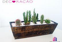 Little Garden / Creative design for pots , indoor gardens and outdoor gardens