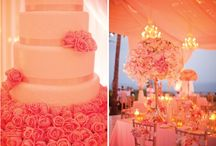 Reception Delight - ideas we love