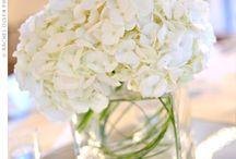 Wedding / by Karen Gates