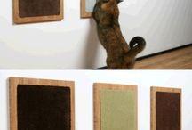casita para los gatitos