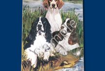 Welsh Springer  / Welsh Springer Memorabilia