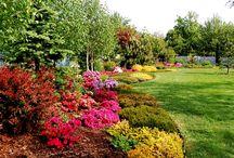 URZĄDZANIE OGRODÓW / Zajmujemy się profesjonalnym urządzaniem ogrodów. To co zaprojektuje dla Państwa architekt krajobrazu i umieści w projekcie my wykonamy kompleksowo.   http://www.robimyogrod.eu/pl/prod/urzadzanie_ogrodow-16-4.html