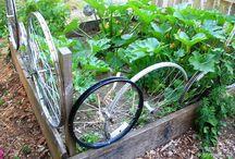 Tires in the garden