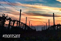 Siurana, Tarragona. / Amazing places