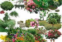건축 꽃 하이앵글