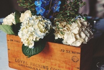 Garden Wedding / Z & C's late summer garden wedding: Mood Board