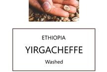 Speciality Fresh Roasted Coffee Beans